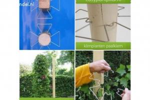KLIMPLANT draadrekken voor in plantenbakken