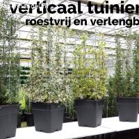 Plantenrekken voor tomaten clematis druiven en meer