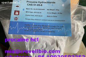 procaine supplier in China ( whatsapp +86 19930503252